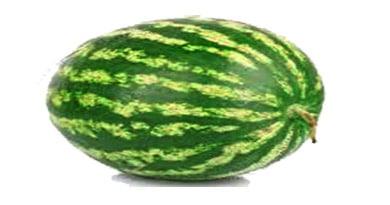l'anguria